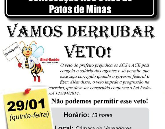 assembleia Patos 29-01site