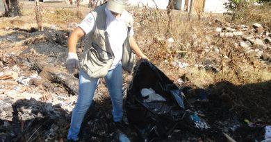 ACE de patos catando lixo2